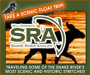 Will Dornan's Scenic River Trips : River trips.