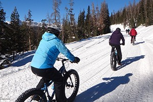 Teton Mountain Bike Winter Bike Tours :: Take a break from skiing and join us for a unique and awesome winter adventure: Guided Winter Fat Bike and Wildlife Tours. We also rent Fat Bikes at great rates.