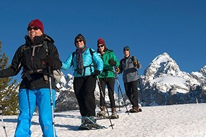 Hole Hiking Experience - Snowshoe & XC Skiing :: Naturalist guided snowshoeing tours in Grand Teton National Park or the surrounding National Forest. Snowshoe rental, bottled water, snacks, & transportation included.