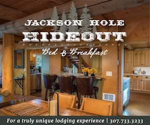 Jackson Hole Hideout : A beautiful hand-built and newly remodeled home nestled in the trees, in Wilson, WY. Wildlife out your bedroom window, gourmet breakfasts and friendly hosts!