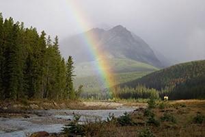 Off the Beaten Path - Tour Teton & Yellowstone NP