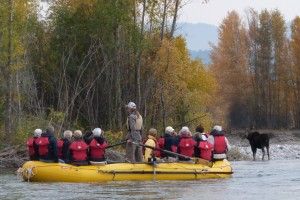 Teton Scenic Floats :: Float the famous Snake River. Daybreak, Lunch and Sunset trip options. Complimentary transportation, riverside lunch, snacks and drinks. Fun for the whole family.