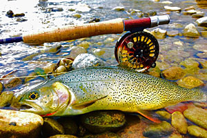 The Red Rock Ranch - Private Fly Fishing Ranch :: Over 2.5 miles of private fly fishing water flows through the ranch, along with 4 stocked ponds! Log cabin accommodations and exceptional dining included.