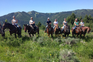 Dry Ridge Outfitters: Daily Horseback Rides