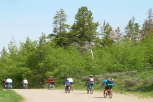 Teton Mountain Bike Rentals - year round