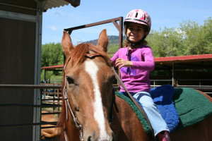 Puzzleface Western Riding Program
