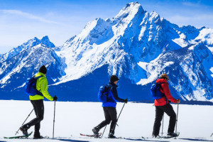Snowshoe Tours with EcoTour Adventures