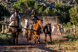 Horseback Riding Dude Ranch Vacations: CM Ranch