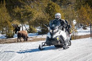 Scenic Safaris - rent your own snowmobile