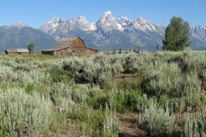 American West Motorcoach Park Tours