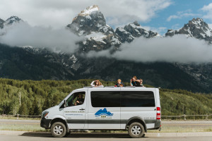 Wildlife Expeditions - Grand Teton Wildlife Tours