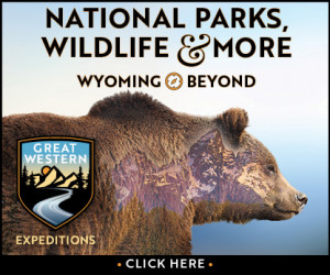 Wyoming Custom Tours