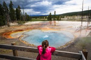 EcoTour Adventures - Maximize Your Park Experience