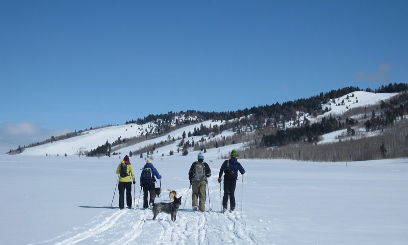 Cross Country Skiing on Shadow Mountain