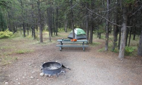 Colter Bay Campground Camping Grand Teton National Park