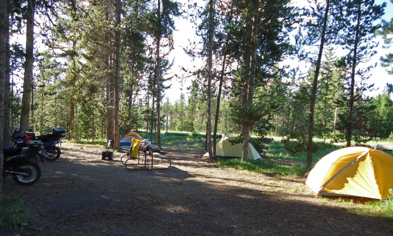 Headwaters Campground At Flagg Ranch Grand Teton National