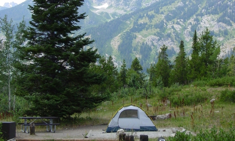 Jenny Lake Campground Camping In Grand Teton National
