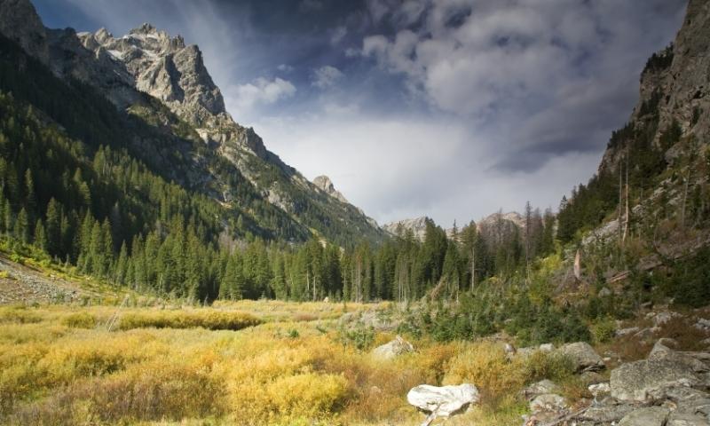 Cascade Canyon Grand Teton National Park