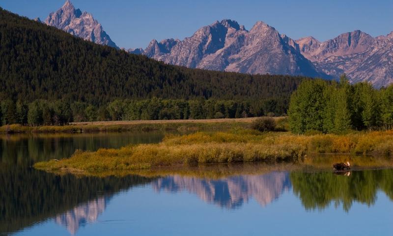Snake River Grand Teton National Park Fly Fishing