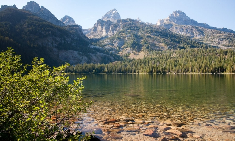 Bradley Lake Grand Teton National Park