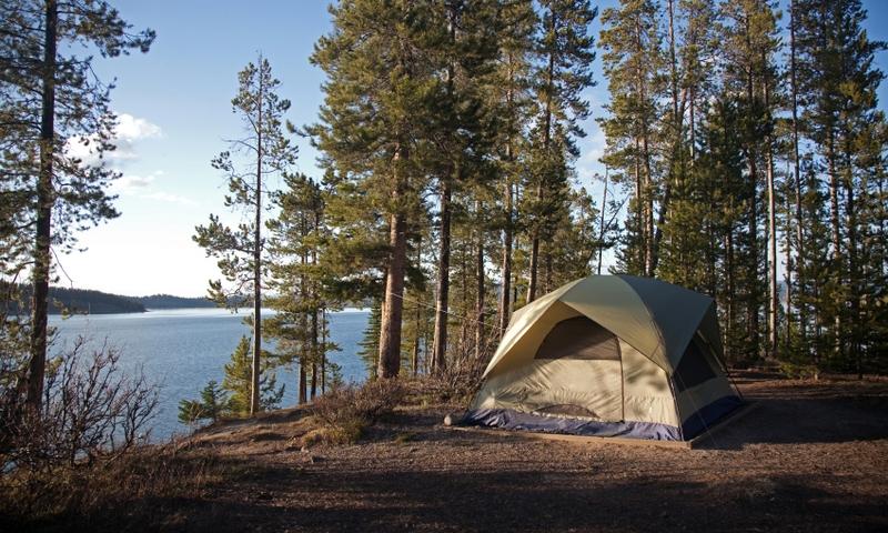 Grand Teton National Park Camping Tent Jackson Lake