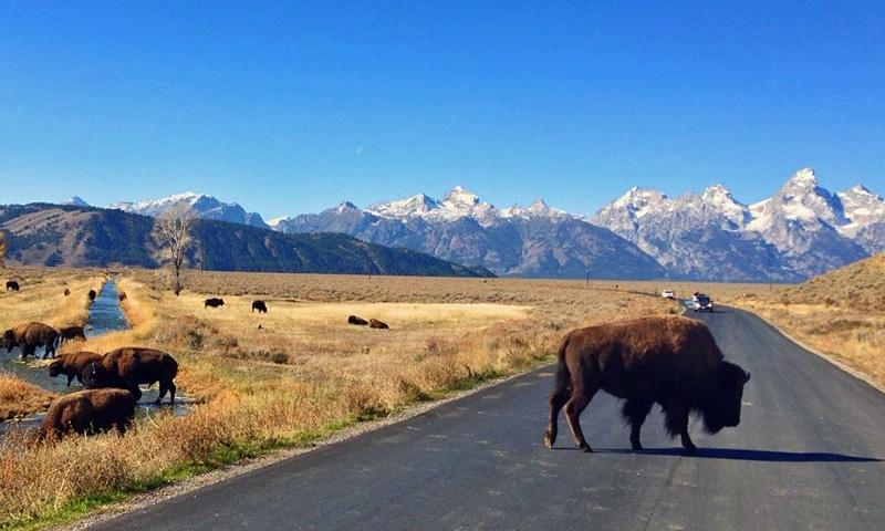 Grand Teton Routes