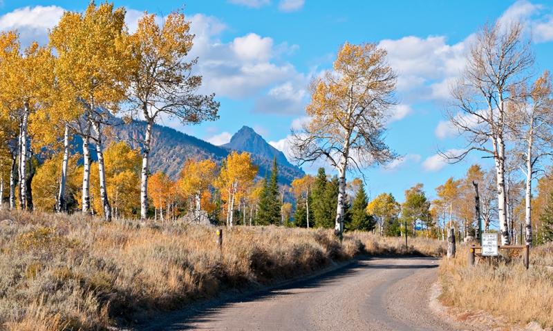 Planning A Road Trip >> Moose Wilson Road, Grand Teton Park - AllTrips