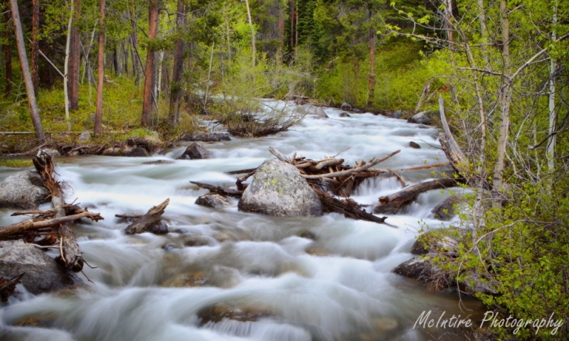 Lake Creek in Grand Teton National Park