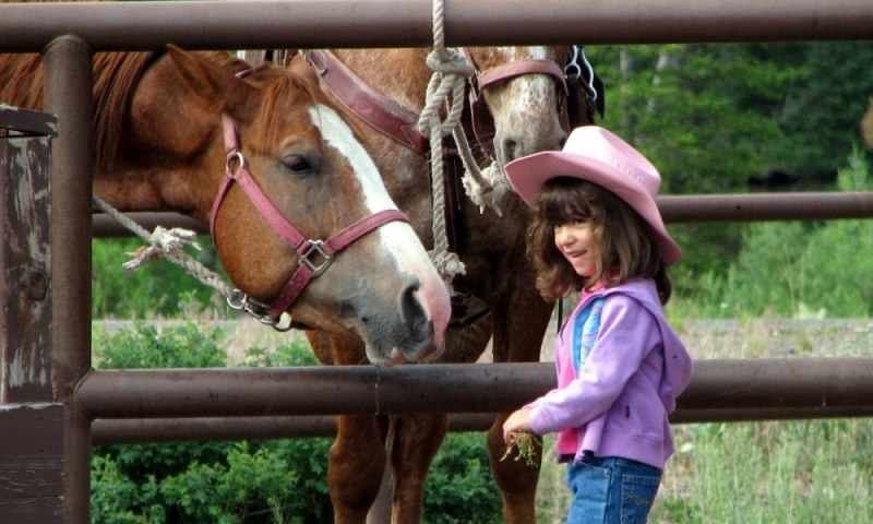 Things To Do In Jackson Wyoming With Kids Alltrips