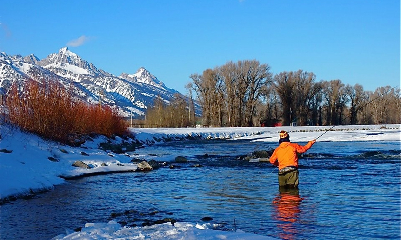 Jackson Hole Fly Fishing Winter