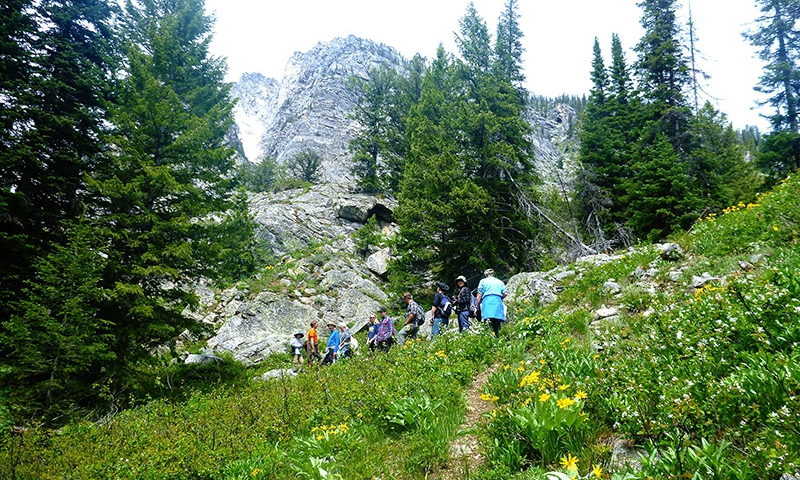 Grand Teton Hikes