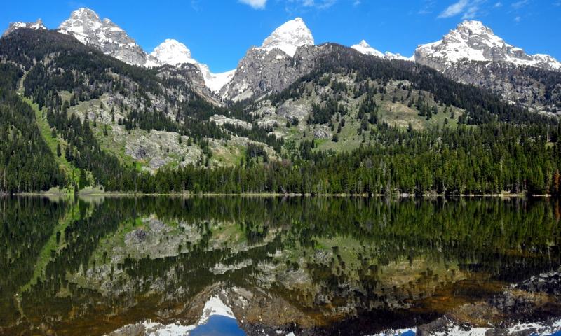 Bradley Lake Trail