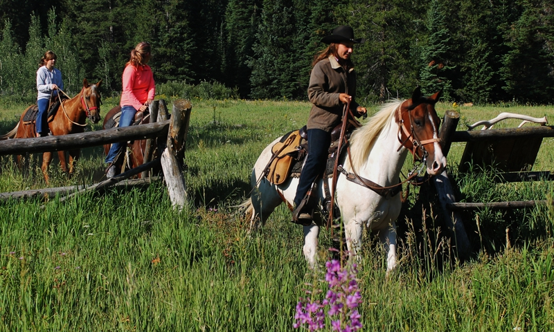 Grand Teton Trail Rides