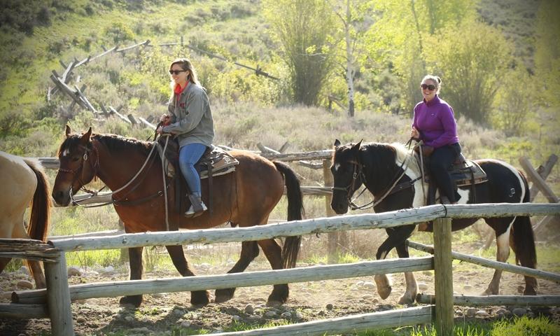 Grand Teton Horseback Riding