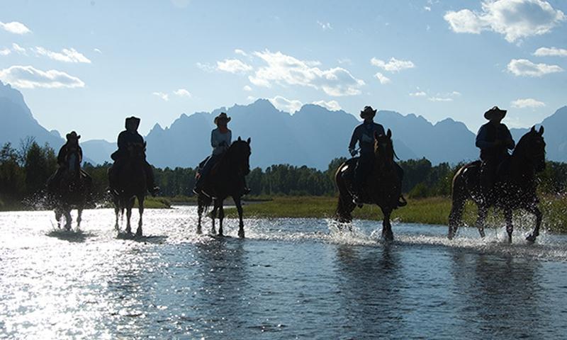 Horseback Riding Jackson Grand Teton Wyoming