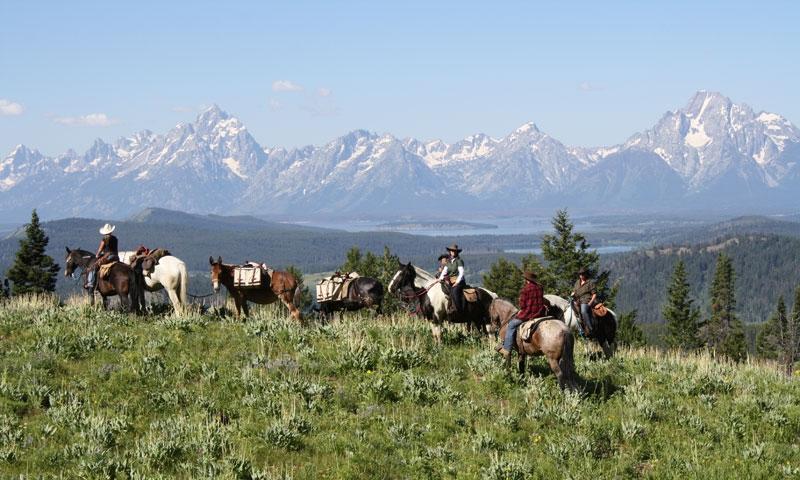 Grand Teton National Park Horse Pack Trips Amp Llama Trekking Alltrips