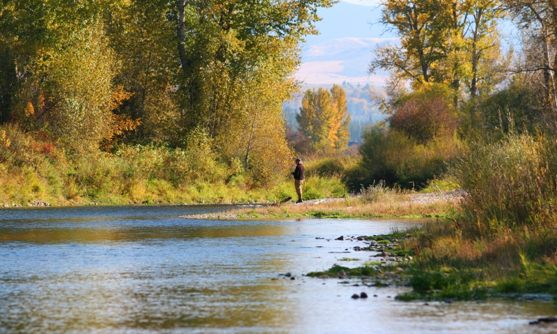 Fishing Grand Teton National Park Cottonwood Creek