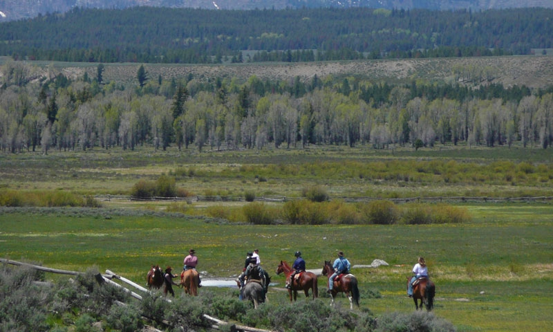Horseback Riding Grand Teton National Park