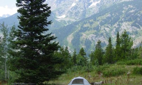 Jenny Lake Campground Grand Teton National Park Camping